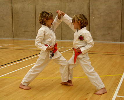 Children & Karate